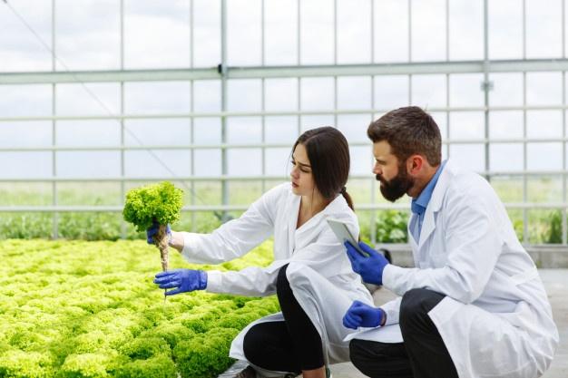 Prospek Kerja Agroekoteknologi