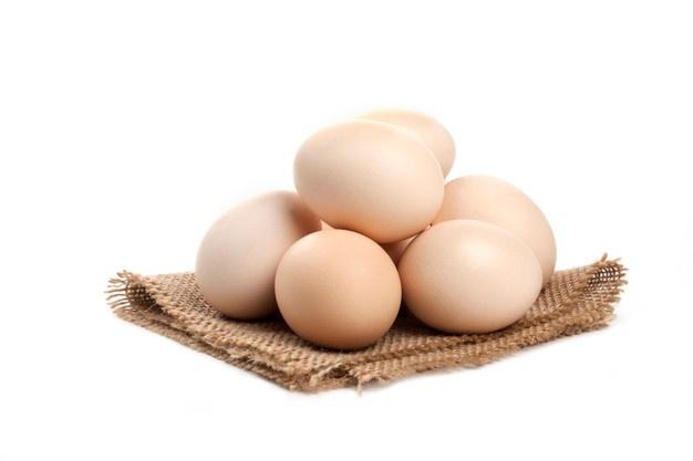 Peluang Usaha Agen Telur